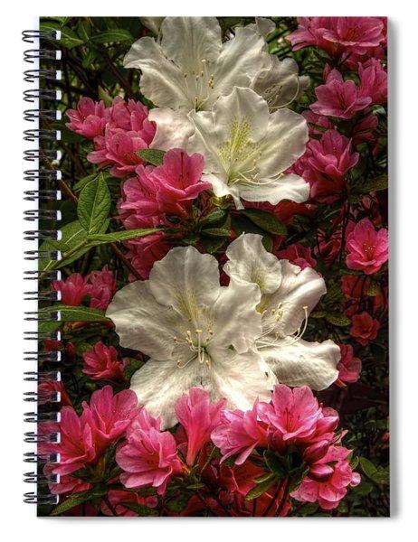 Merging Azaleas  Spiral Notebook