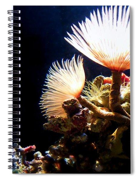 Mermaid's Playground Spiral Notebook