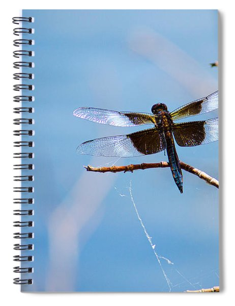 Merrill Creek Dragonfly Spiral Notebook