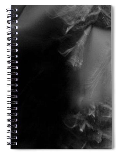 Mideastern Dancing 6 Spiral Notebook