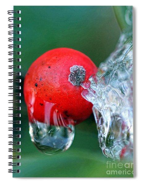 Midwinter Meltdown Spiral Notebook