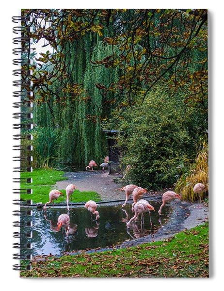 Mighty Legs Spiral Notebook