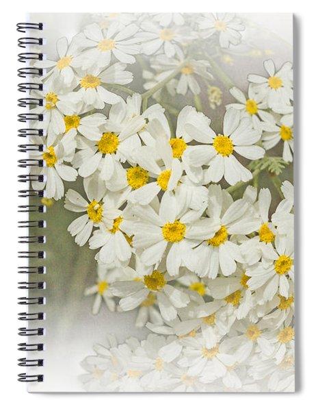 Millicent Spiral Notebook