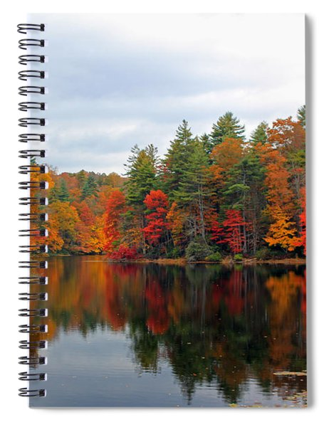 Mirrored Lake Spiral Notebook