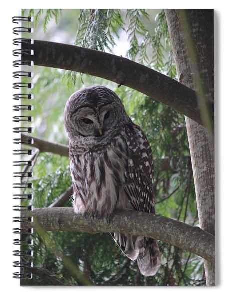 Missing His Friend Spiral Notebook