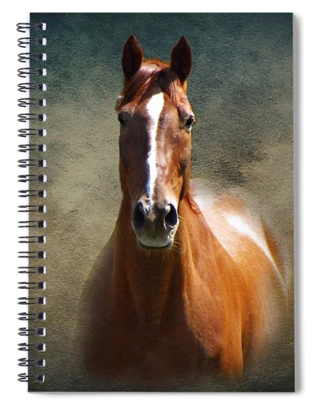 Misty In The Moonlight Spiral Notebook
