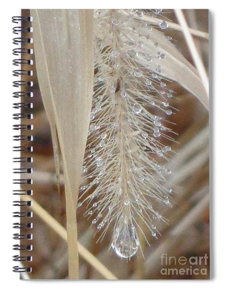 Misty Jewel Spiral Notebook