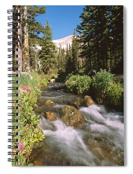 Mitchell Creek Spiral Notebook