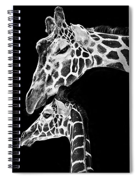 Mom And Baby Giraffe  Spiral Notebook