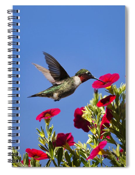 Moments Of Joy Spiral Notebook
