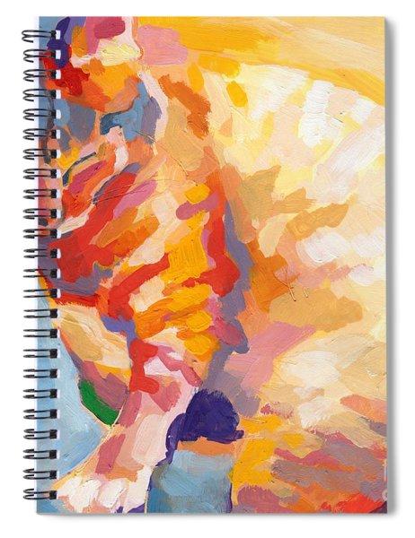 Mona Lisa's Rainbow Spiral Notebook