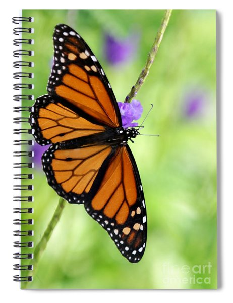 Monarch Butterfly In Spring Spiral Notebook