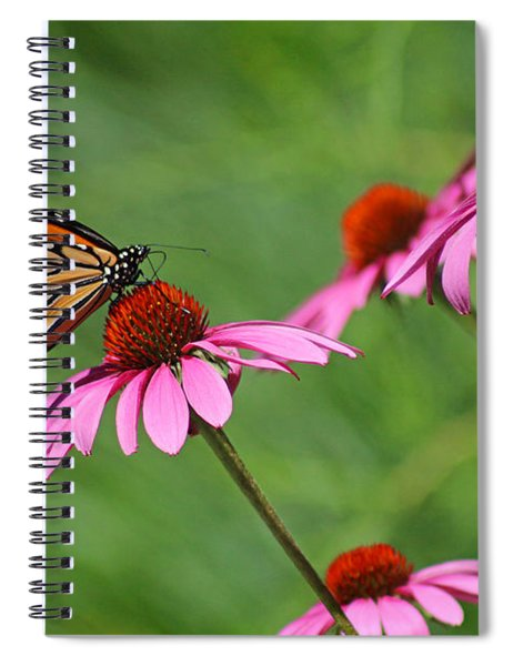 Monarch On Garden Coneflowers Spiral Notebook