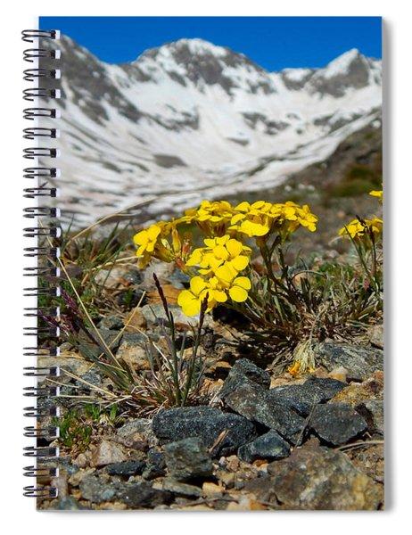 Blue Lakes Colorado Wildflowers Spiral Notebook