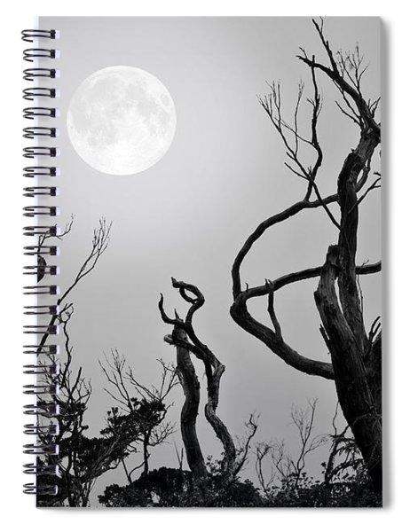 Moon Whisperer Spiral Notebook