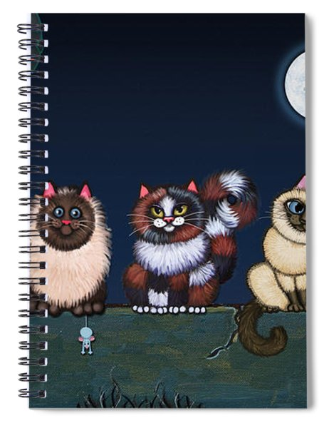 Moonlight On The Wall Spiral Notebook