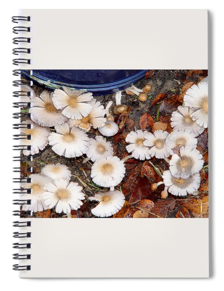 Morning Mushrooms Spiral Notebook