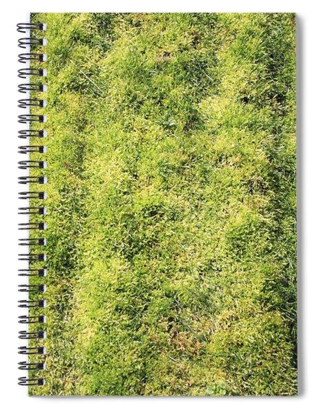 Mossy Grass Spiral Notebook