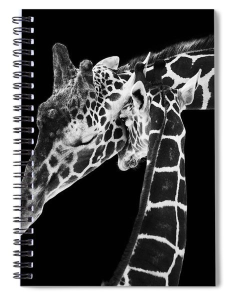 Mother And Baby Giraffe Spiral Notebook