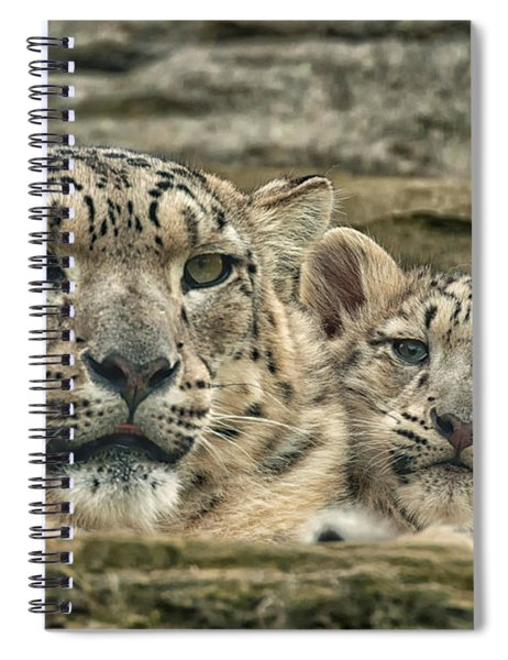 Mother And Cub Spiral Notebook