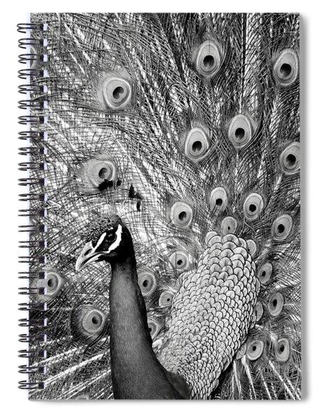 Mother Natures Fireworks Spiral Notebook