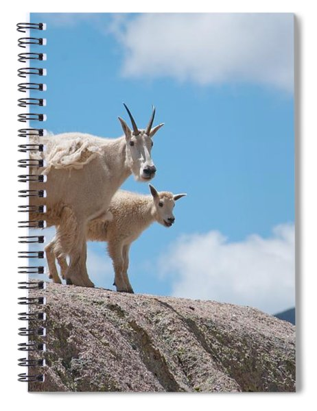 Mountain Goat Parent And Kid Spiral Notebook
