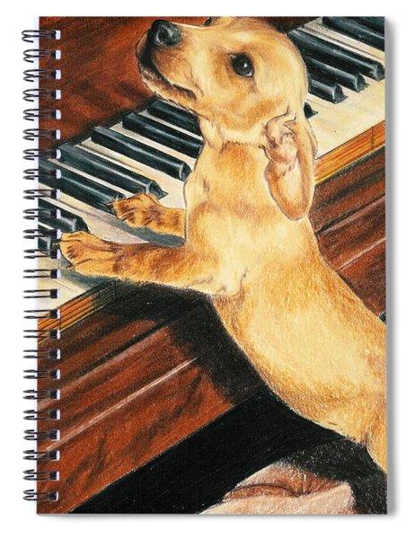 Mozart's Apprentice Spiral Notebook