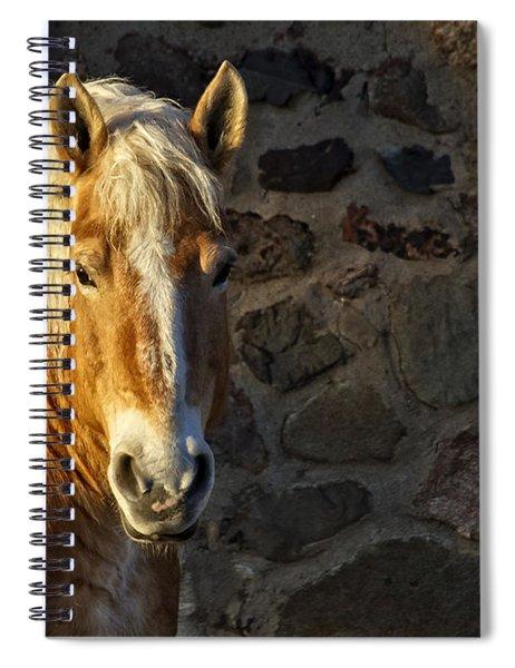 Mr. Handsome Spiral Notebook