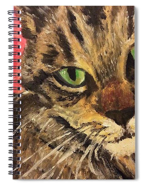 Mr Maowell Spiral Notebook