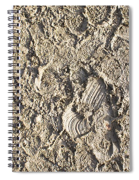 Mud Detail Spiral Notebook