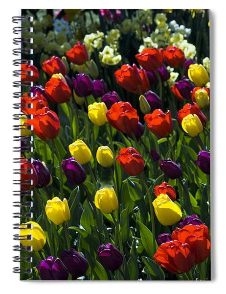 Colorful Tulip Field Spiral Notebook