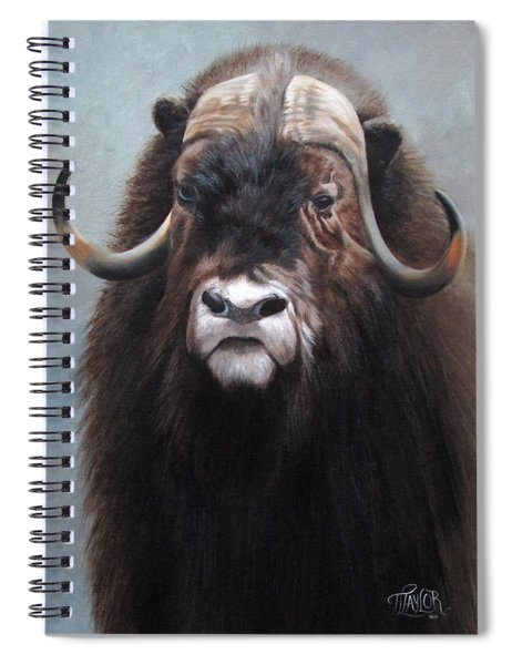 Musk Ox Spiral Notebook