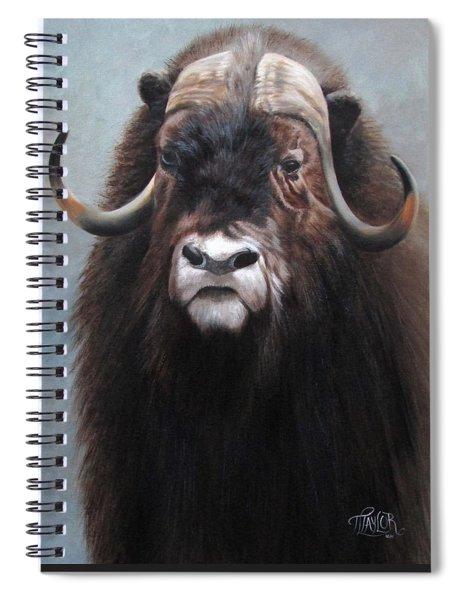 Musk Ox Spiral Notebook