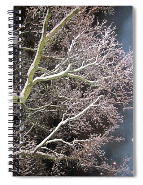 My Magic Tree Spiral Notebook