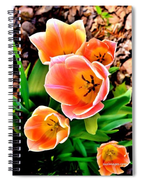 My Mom's Tulips Spiral Notebook