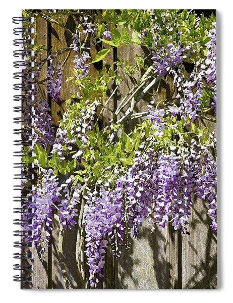 Nancys Wisteria 2 Db Spiral Notebook