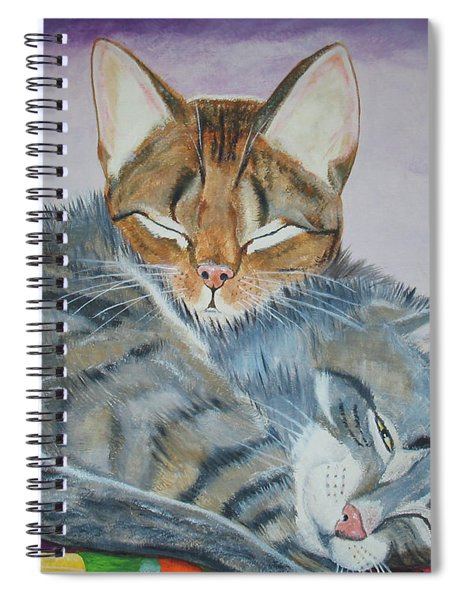 Nap Time Spiral Notebook