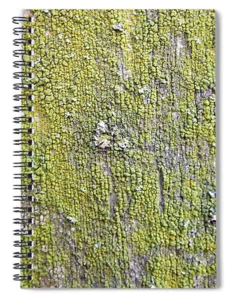 Natural Abstract 1 Old Fence With Moss Spiral Notebook