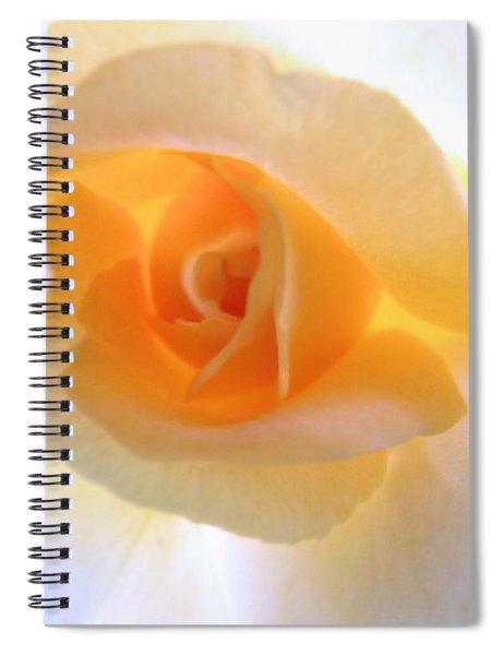 Natures Beauty Spiral Notebook