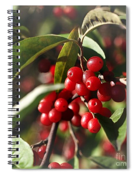 Natures Gift Of Red Berries Spiral Notebook
