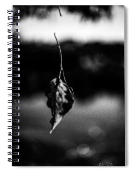 Natures Illusion Spiral Notebook
