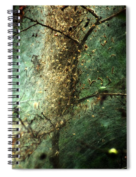 Natures Past Captured In A Web Spiral Notebook