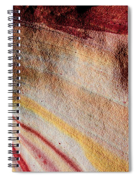 Nature's Valentine Spiral Notebook