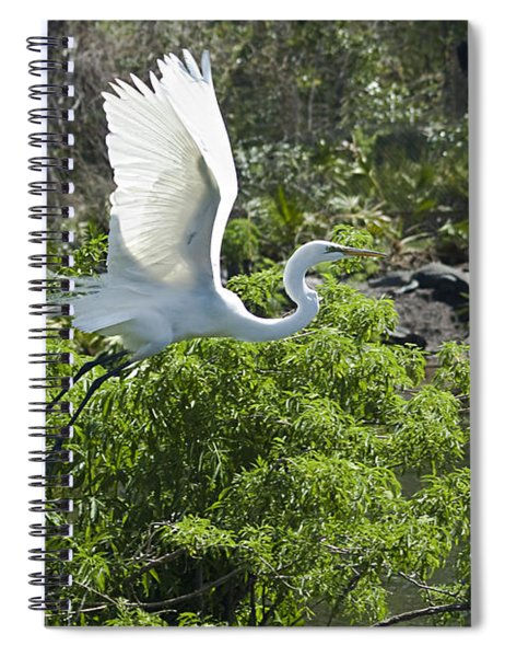 Need More Branches Spiral Notebook