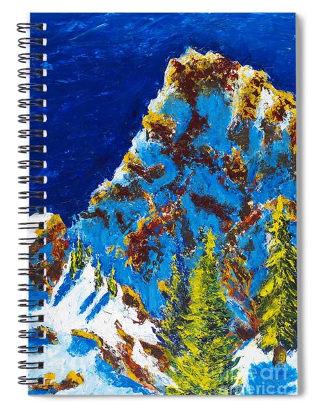 Needles 2 Spiral Notebook