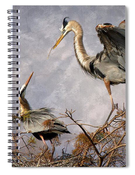 Nesting Time Spiral Notebook