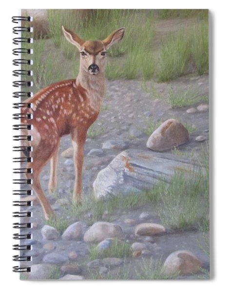 New Beginnings 2 Spiral Notebook
