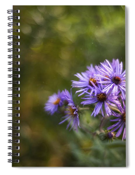 New England Asters Spiral Notebook