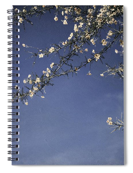 Next Time I'll Be Sweeter Spiral Notebook