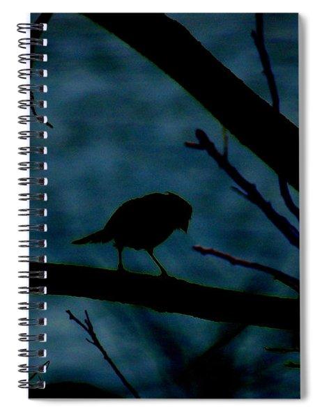 Night Bird Spiral Notebook